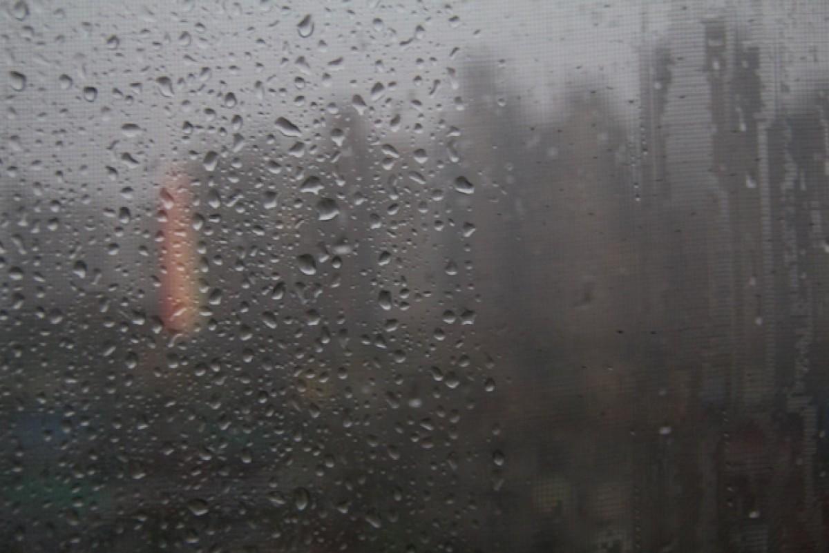 POTD day 120 Rain