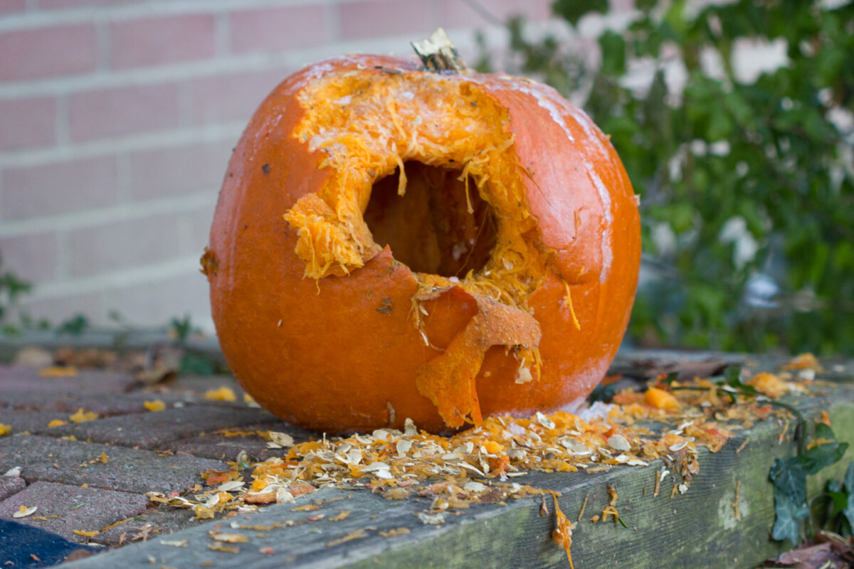 Pumpkin Explosion