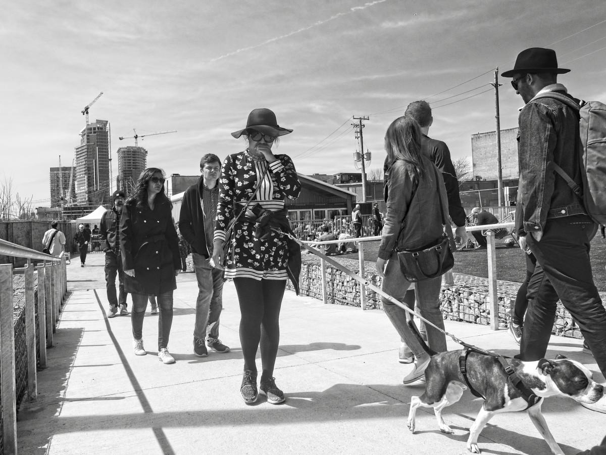 Dog Walks Woman