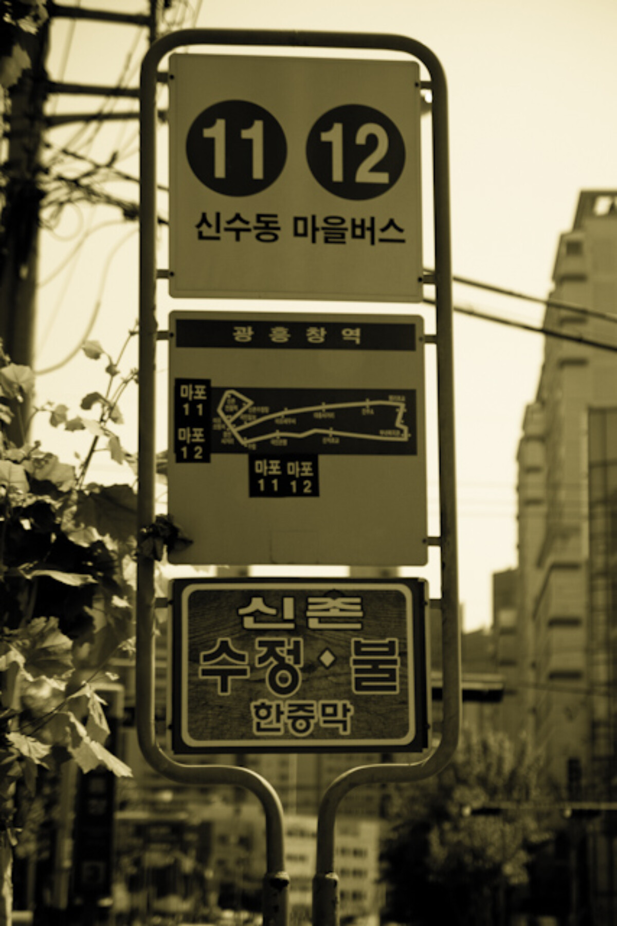 POTD day 149 Bus stop